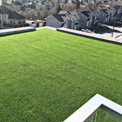 penthouse-synthetic-grass